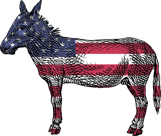 Donkey with American flag